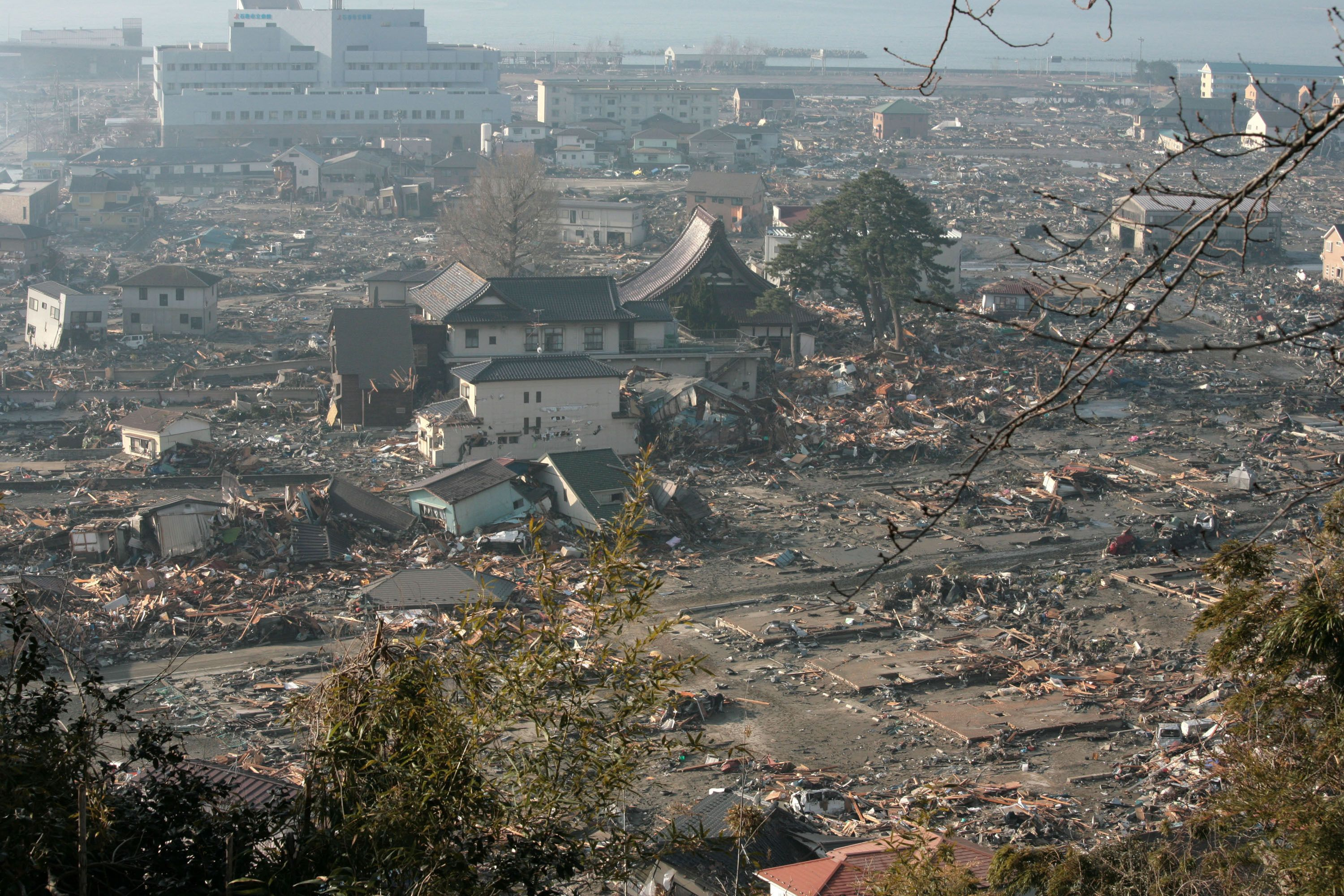 How To Survive A Tsunami Popular Science