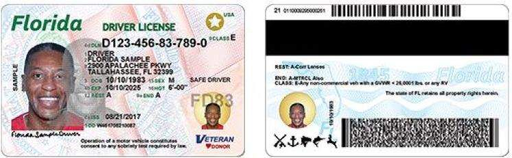 New Florida driver's licenses -- and new security features