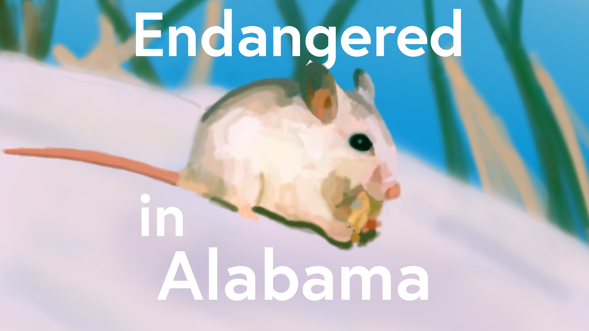 Alabama beach mouse helped build the dunes that protect our coast - al.com
