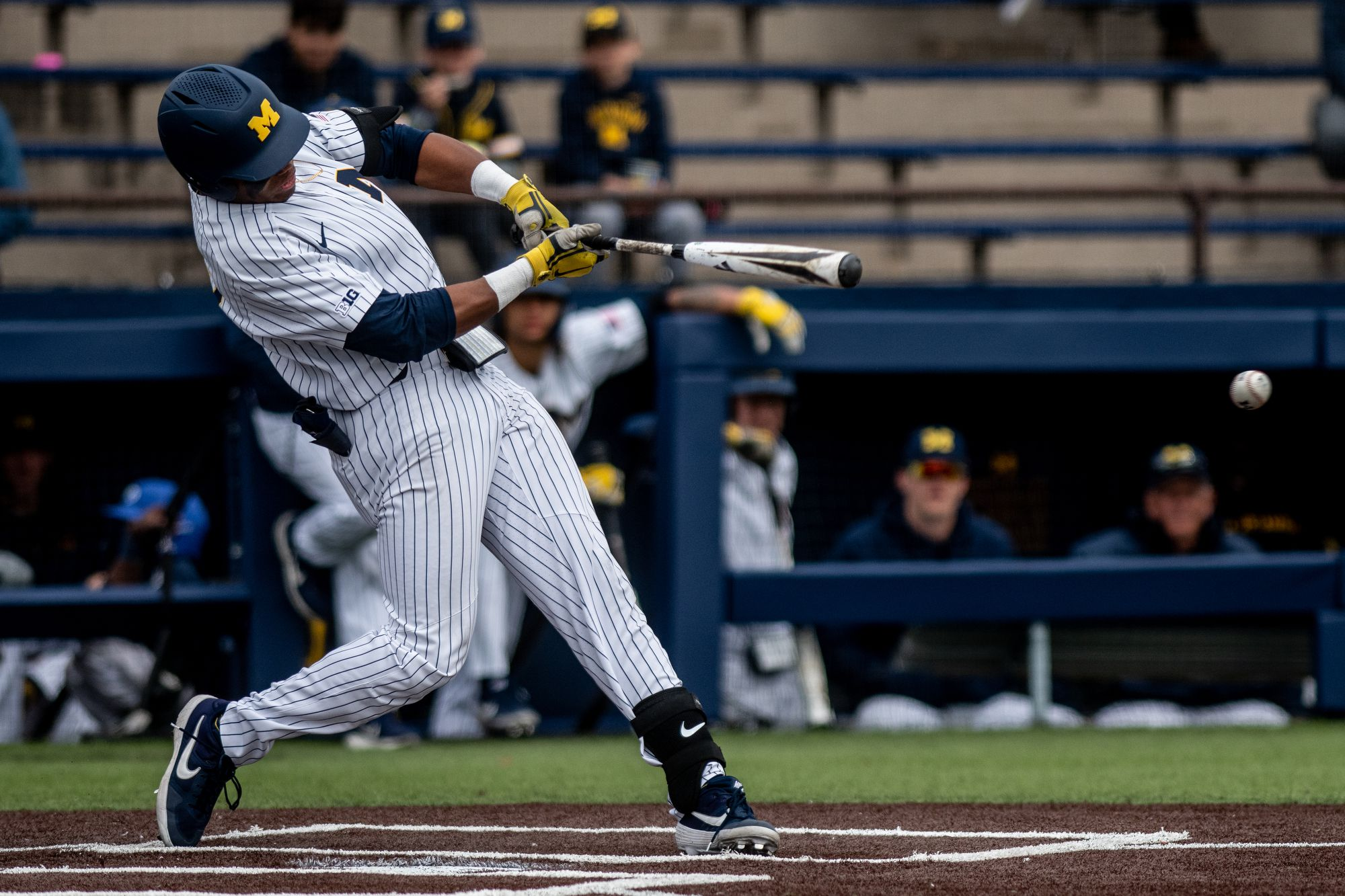 Two Michigan baseball players named to Golden Spikes Award ...