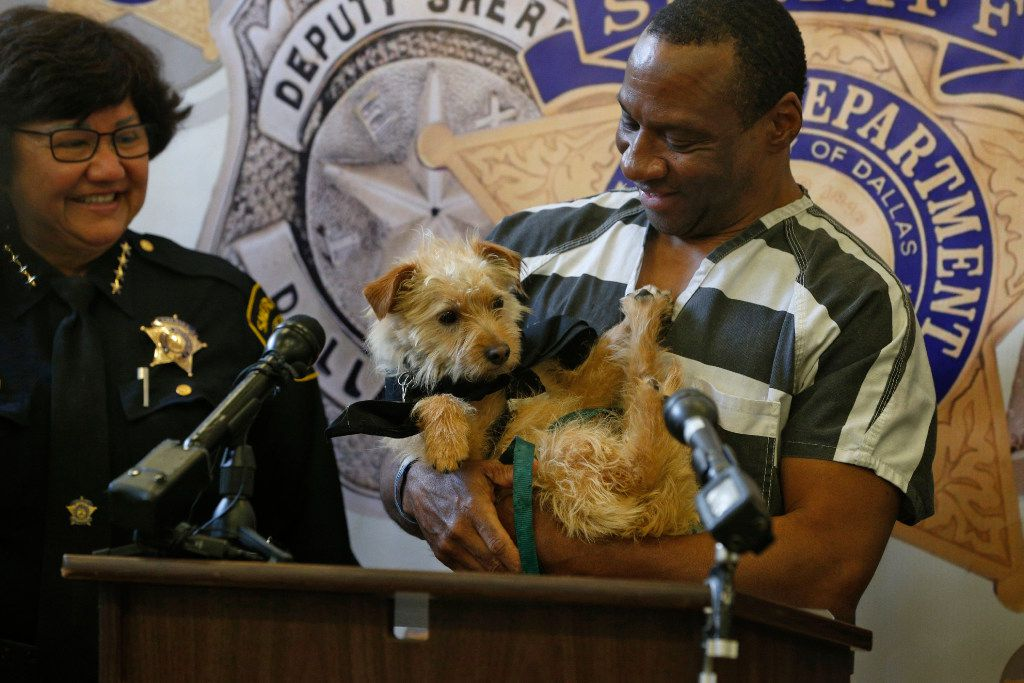 For jail-hardened inmates, dogs are bringing out a softer side