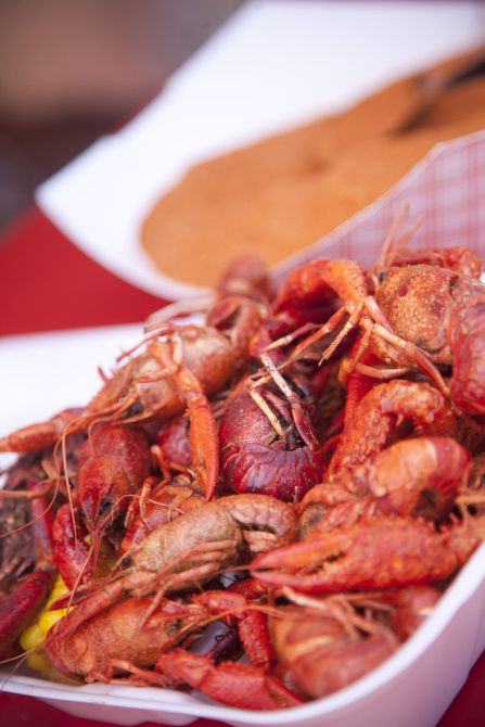 Breaux Bridge Crawfish Festival 2020.Head To Louisiana For All The Crawfish You Can Eat