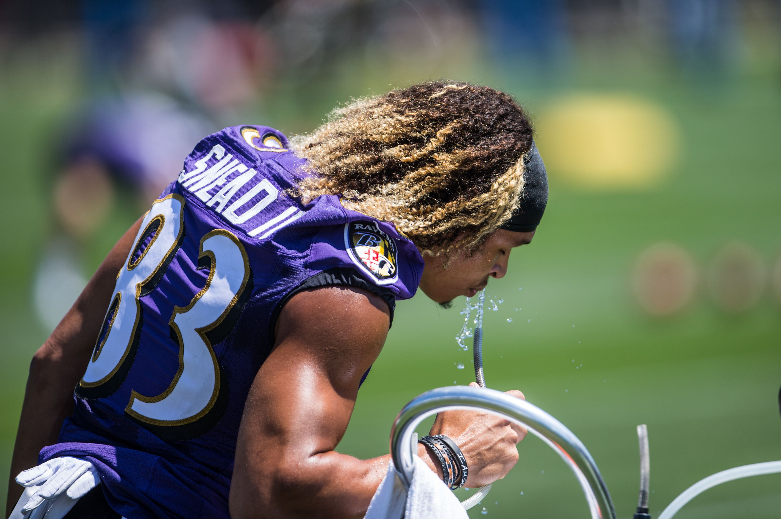 Dad, diet and sunshine: How Baltimore Ravens' Willie Snead got in ...