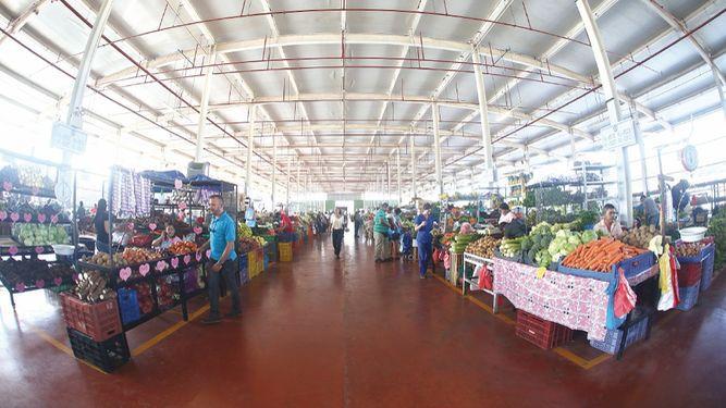 Por Toque De Queda Merca Panama Modifica Su Horario De Atencion