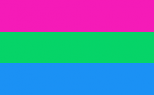 Atlanta Pride What Do All The Flags Stand For See more ideas about polyamory, positivity, flag guide. atlanta journal constitution