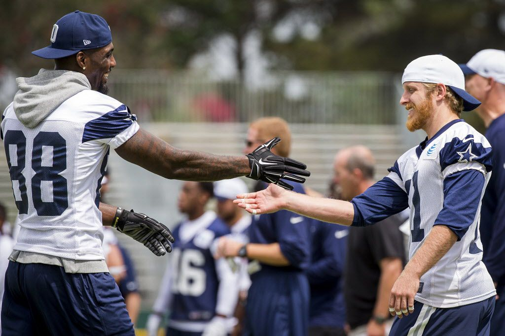 Who Will Have More Receiving Yards This Year Dez Bryant Or
