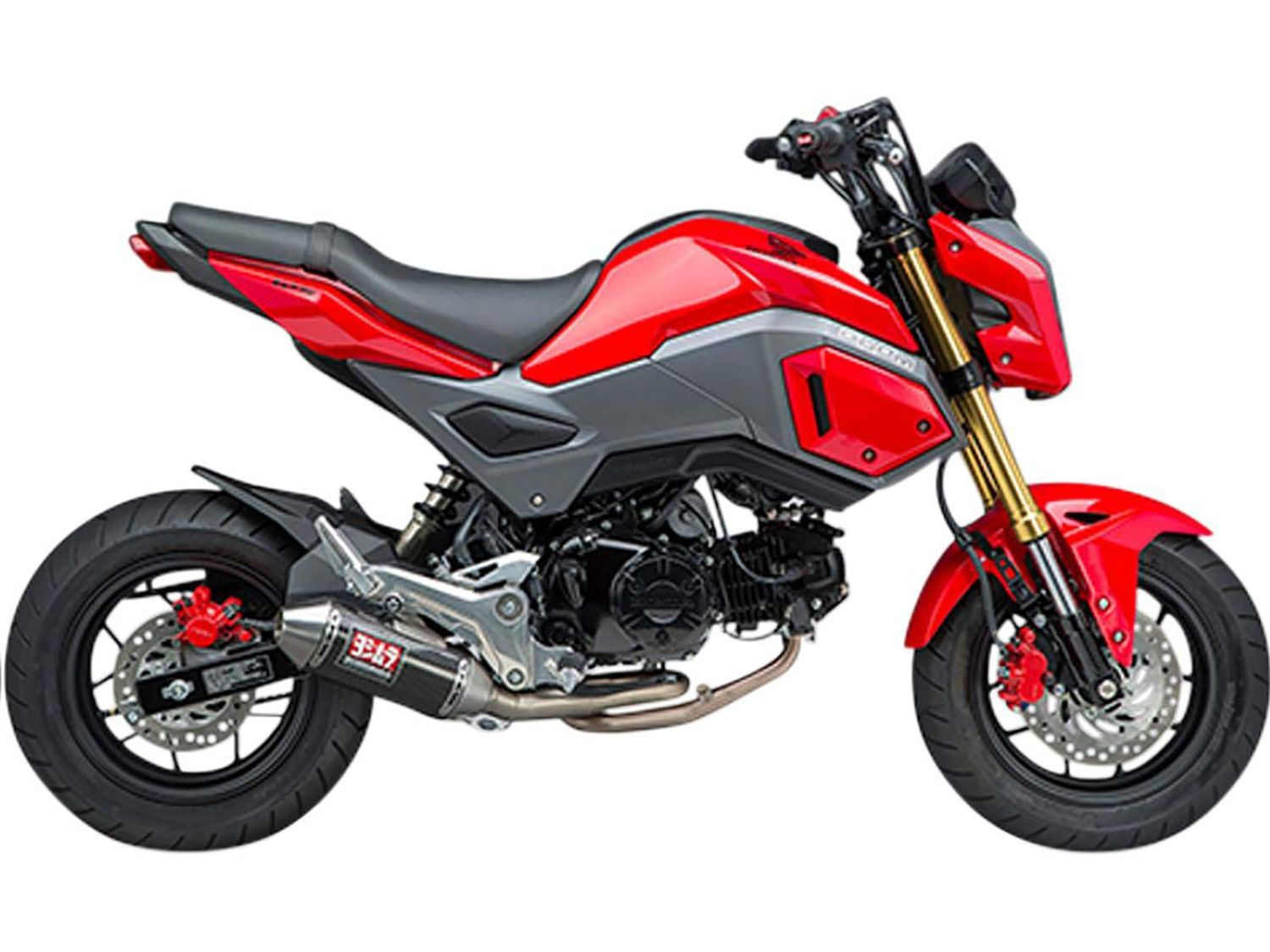 The Best Mods Available For The Honda Grom Motorcyclist
