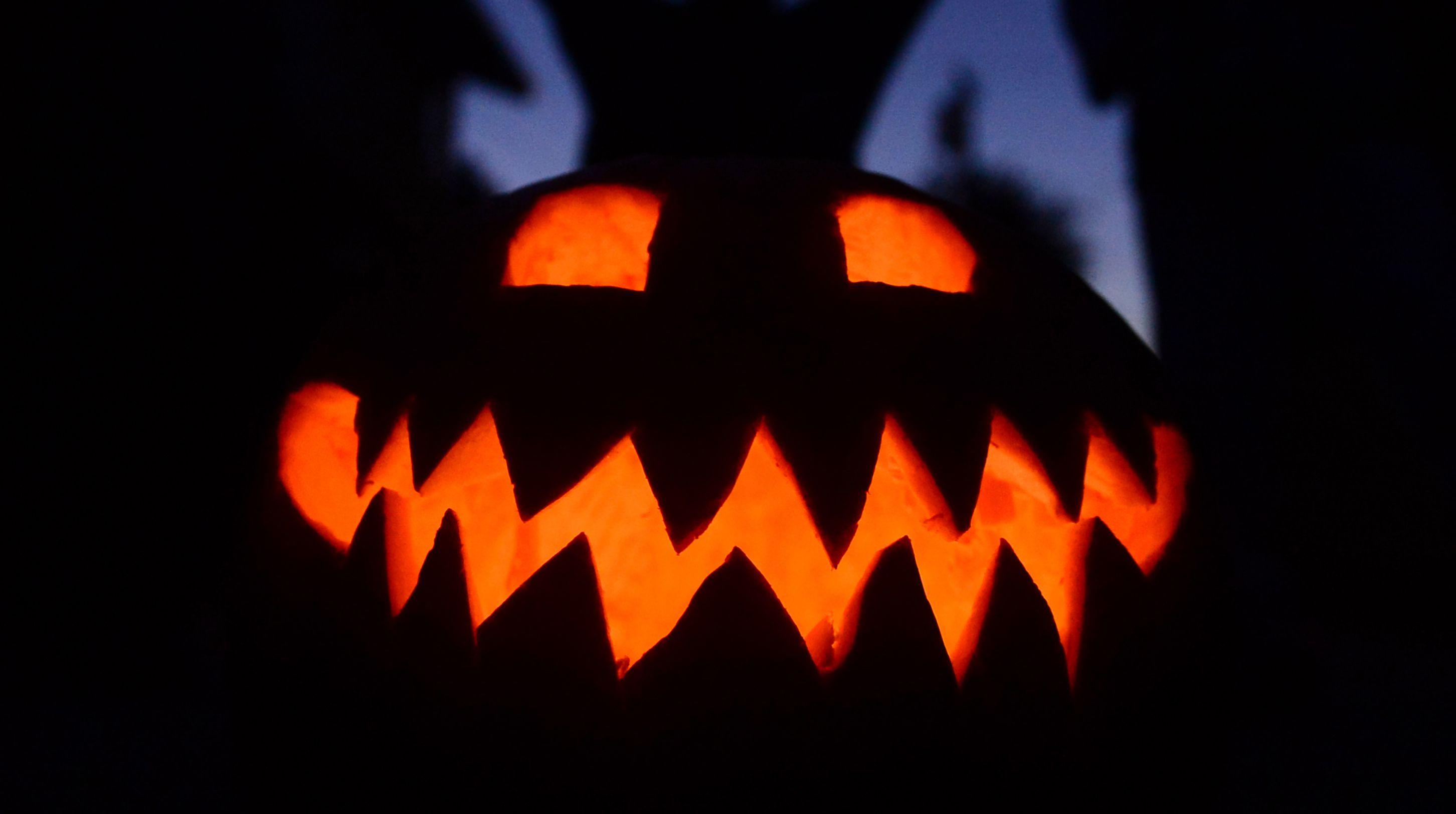 Halloween Events Syracuse Ny 2020 Lights on the Lake, Fright Night creators to bring new Halloween